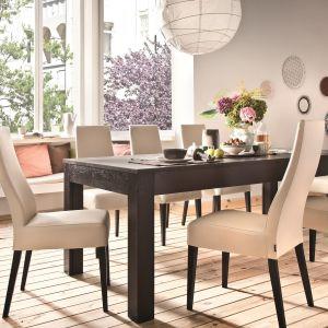 Krzesło Leo i stół Uniwersal marki Paged Meble. Fot. Paged Meble