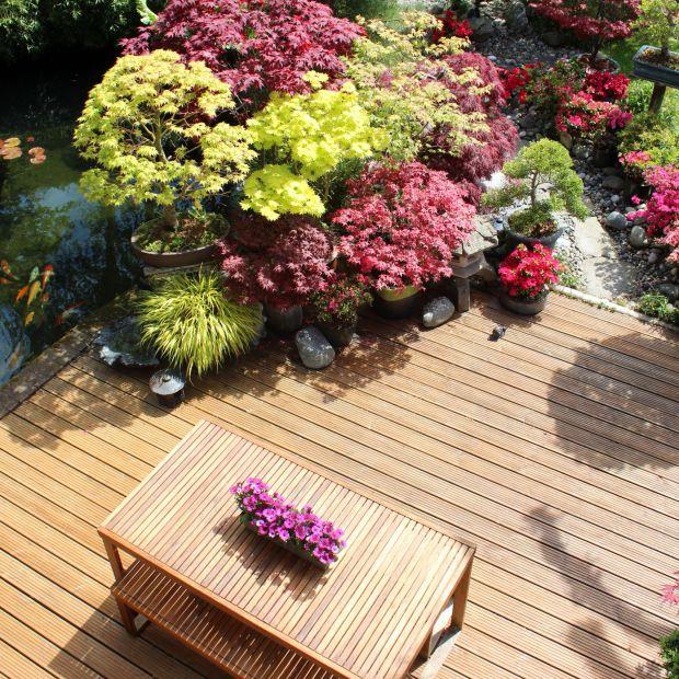 Drewniane meble i tarasy - zadbaj o piękny wygląd