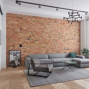 Charakter mieszkania został wydobyty dzięki pięknej ceglanej ścianie i wyrafinowanej plastyce sztukaterii, podkreślonej czarnymi liniami listwy oświetleniowej i konsekwentnie czarnymi listwami drzwi przesuwnych, które niejako okalają całą otwartą przestrzeń. Apartment w Poznaniu. Realizacja i zdjęcia Studio Forma 96/ZenDiznajn