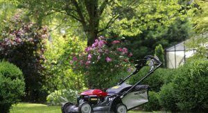 Wraz z otwarciem nowego sezonu w ogrodach nadchodzi czas trawników, które będą zdobić posesję i ogród przez całe lato aż do późnej jesieni, stając się dodatkowym, naturalnym pokojem.
