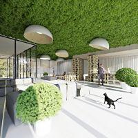 Wytyczne projektowe Inwestora były zbieżne z historią miejsca, w którym powstał hotel. Przez długi czas funkcjonowały tu sady oraz ogrody gdańskich mieszczan. Projekt i wizualizacje: ANIEA - Andrzej Niegrzybowski architekt