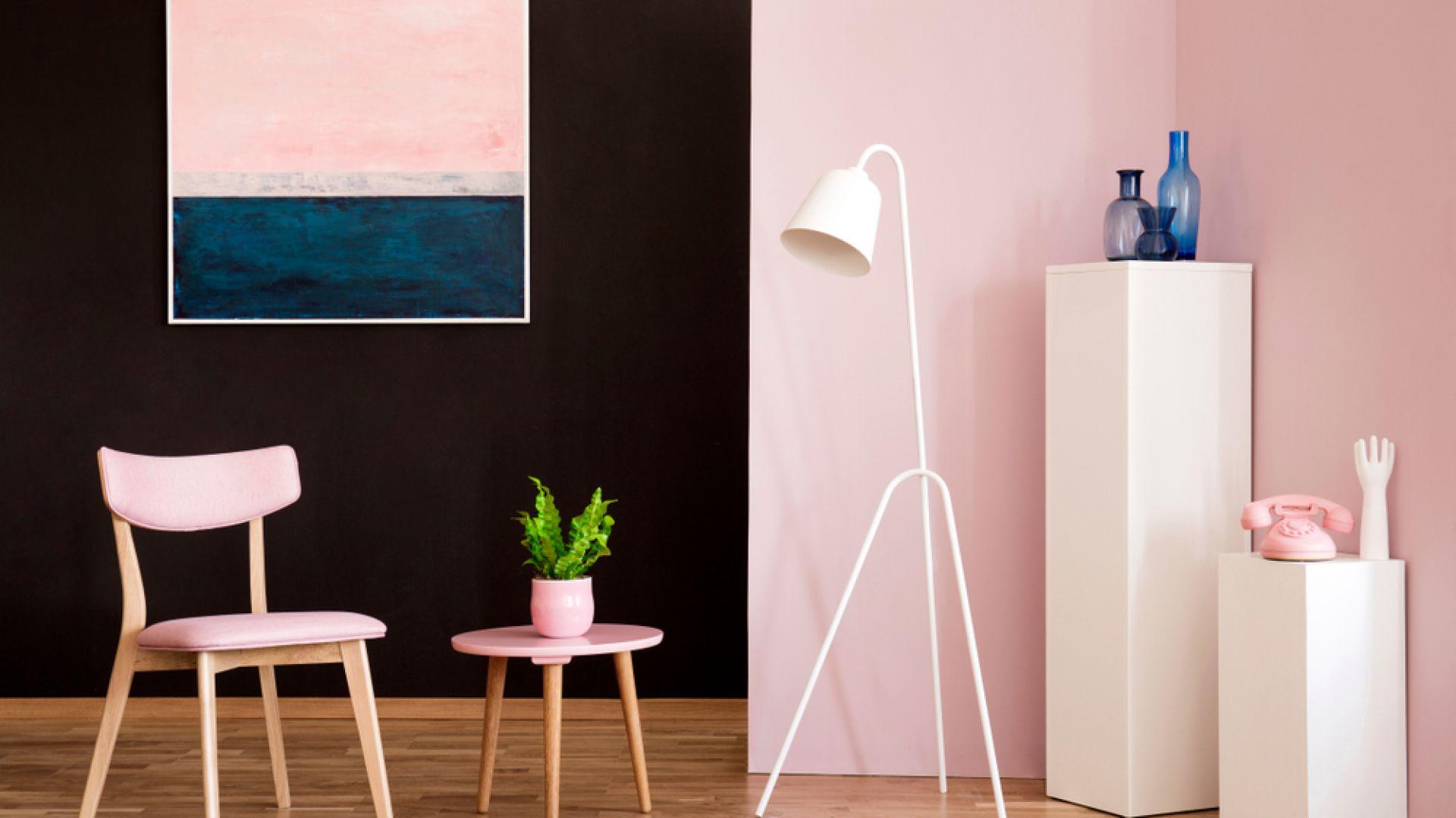 Kontrasty we wnętrzach. Ciekawe pomysły na kolory ścian. Fot. Farba Termointeligentna CIQ