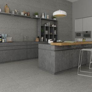 Płytki do kuchni. Kolekcja Cocina Grey. Fot. Apavisa