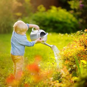 Podlewanie ogrodu. Fot. Krysiak