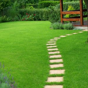 Pielęgnacja ogrodu. Fot. Krysiak