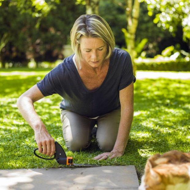 Planujesz przyjęcie w ogrodzie? Zadbaj o trawnik