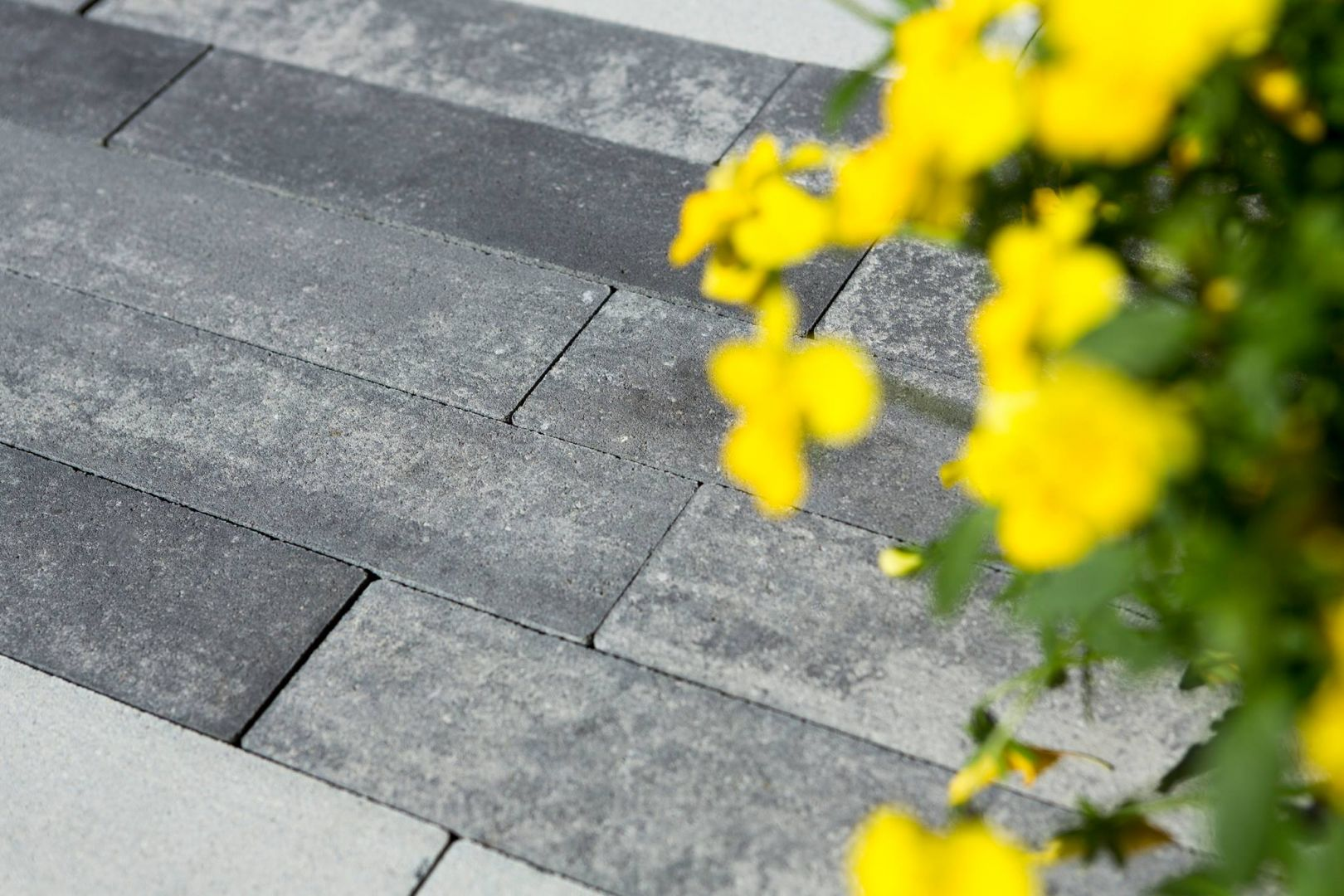 Kostka betonowa Metrik w kolorze nerino. Fot. Polbruk