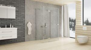 Duża łazienka również może przysporzyć problemów podczas urządzania. Na przykład wymarzyliśmy sobie kabinę prysznicową z ultrapłaskim brodzikiemi ogromna designerska deszczownica umocowana pod sufitem bezpośrednio nad głową.