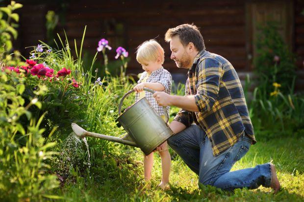 Ogród latem - 10 prostych rad, by mieć bujny ogród