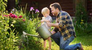To właśnie latem ogród jest najpiękniejszy, wabi nas feerią barw i zapachów. Jednak by ten obrazek mógł się ziścić, musimy być skutecznym ogrodnikiem w naszym ogrodzie i zadbać o trawnik, kwiaty, krzewy i drzewa oraz ewentualne uprawy w przyd