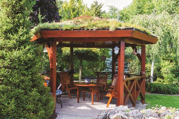 Lato w ogrodzie - piękna i zadbana posesja