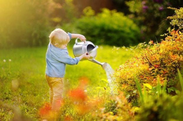 Jak zadbać o trawnik w upalne dni - 3 najważniejsze wskazówki