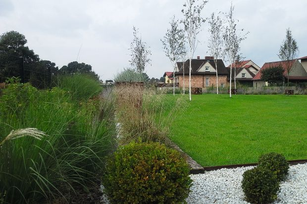 Piękny ogród: porady, zdjęcia, pomysły