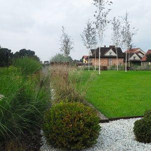 Planowanie ogrodu najlepiej zacząć równolegle z planowaniem domu. Dzięki temu zarówno kubatura budynku, wnętrze jak i otoczenie będą ze sobą współgrały. Projekt ogrodu: Dominika Błaszczyk. Fot. Dominika Błaszczyk