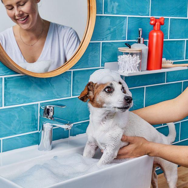 Modna łazienka - znajdź styl dla siebie