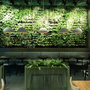 Rośliny i natura to nie tylko dekoracja. To inwestycja w ludzi, ich samopoczucie i zdrowie. Fot. Hadart