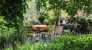 Polskie ogrody i polscy ogrodnicy, co o nich wiemy? Jak z bliska wyglądają ogrody Polaków? Na te i inne pytania odpowie twórca jednego z najpopularniejszych blogów ogrodniczych, autor podręcznika 'Jak przejść z ogrodem na TY?', ekspert ogrodniczy