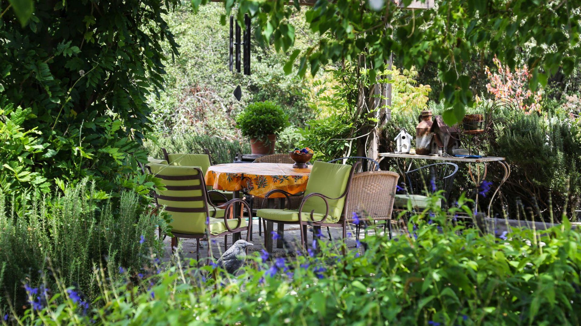 Polskie ogrody - zobacz jak je urządzono. Fot. freerangestock.com