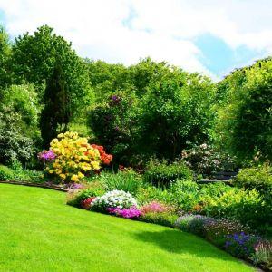 Letnie otoczenie domu: zaproś pszczoły do ogrodu. Fot.  Krysiak
