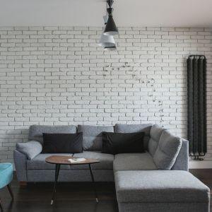 Szarość w tym wydaniu mrozi. Oszczędne kolorystycznie wnętrze spodoba się miłośnikom nowoczesnej prostoty, którzy w swoim salonie chcą stworzyć spokojną, niezobowiązującą przestrzeń wypoczynku. Projekt: Anna Nowak- Paziewska. Fot. Emil Karpowicz