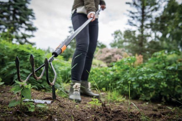 Ogród latem - jak pozbyć się chwastów