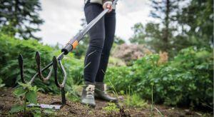Odchwaszczania to jedna z podstawowych prac w naszych przydomowych ogródkach, którą wykonujemy praktycznie do końca lata. Dzięki temu możemy cieszyć się pięknymi rabatami kwiatowymi i grządkami warzywnymi.