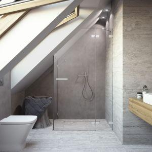 Łazienka na poddaszu wykonana na miarę. Fot. Radaway