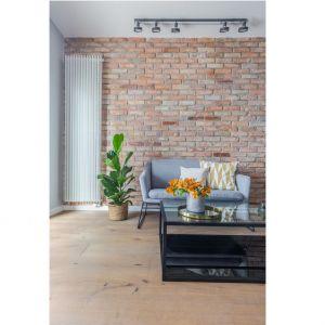Śródmiejski apartament: styl industrialny w wersji soft. Projekt i zdjęcia: Decoroom