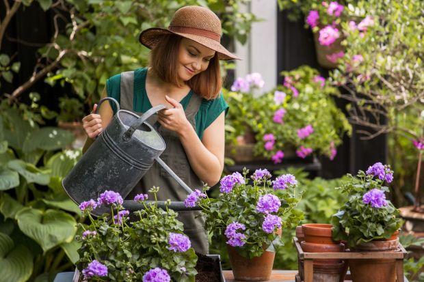 Lato w ogrodzie - 10 pomysłów na piękne otoczenie domu