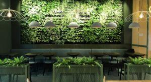Rośnie świadomość inwestorów w zakresie zrównoważonego rozwoju. Coraz częściej zauważają też, że zieleń - zarówno przed, jak i w budynkach - wpływa nie tylko na wartość realizacji. Zrozumieliśmy, że rośliny i natura to nie tylko dekor