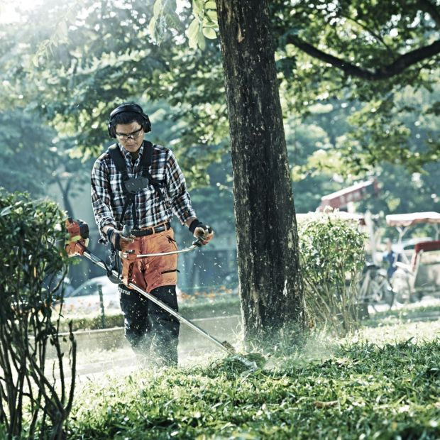 Pielęgnacja ogrodu: wybieramy wykaszarkę