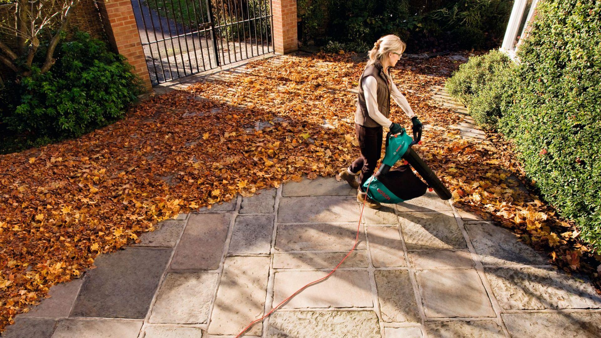 Porządek w ogrodzie jesienią. Pomocne odkurzacze i dmuchawy do liści. Fot. Bosch