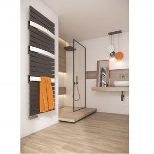 Dzięki szerokim kolektorom grzejnik Evia ma nowoczesny wygląd, a pojedyncze kolektory delikatnie wygięte w łuk pozwalają szybko wysuszyć ręczniki. Fot. Purmo