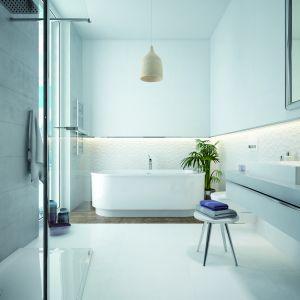 Wanna wolnostojąca WOW/FREE oraz prysznic typu walk-in. Fot. Sanplast