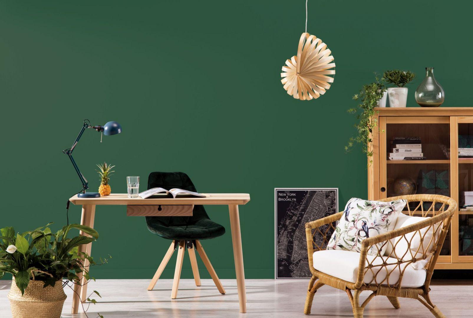 Malujemy ściany: ekologiczne farby do wnętrz. For. Beckers