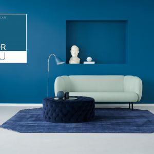 Chinese Porcelain. Kolor Roku 2020 marki PPG. Fot. PPG