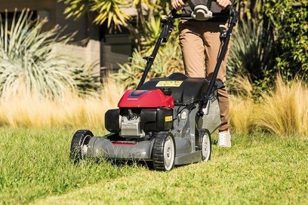 Zakładanie trawnika. Warto zrobić to jesienią
