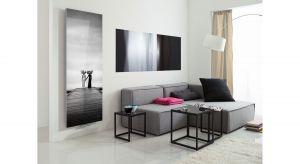 Minimalizm i nieoczywista forma sprawiają, że INVENTIO idealnie wpasuje się w nowoczesne wnętrze, wymagające niestandardowych rozwiązań. Grzejnik ten odpowiada na potrzeby odbiorców którzy cenią styl i nowoczesny design - szczególnie wrażliwyc