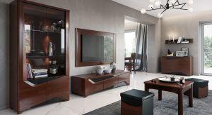 Jak urządzić klimatyczny salon? Warto zadbać przede wszystkim o odpowiednie połączenie mebli, oświetlenia i dodatków.