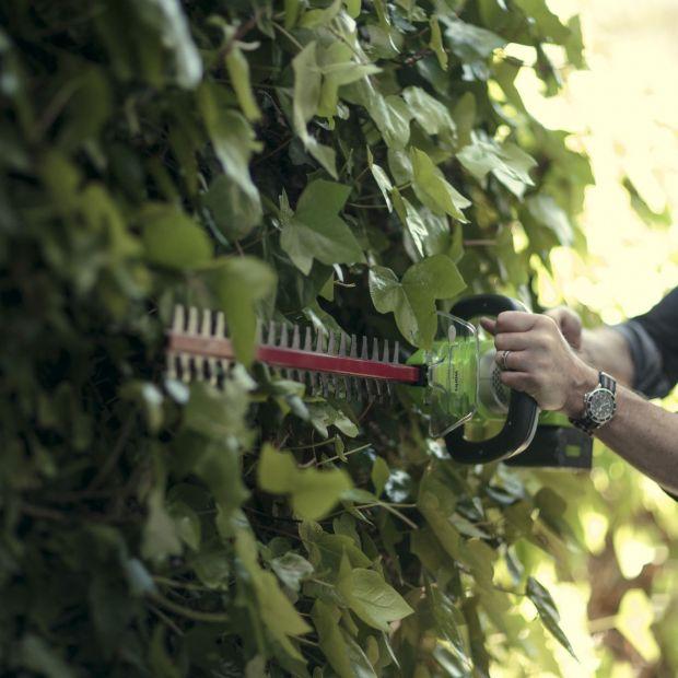 Ogród jesienią - pora na cięcie gałązek