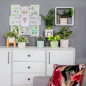 Sztuczne rośliny – idealny pomysł na przytulne wnętrze. Fot. salony Agata