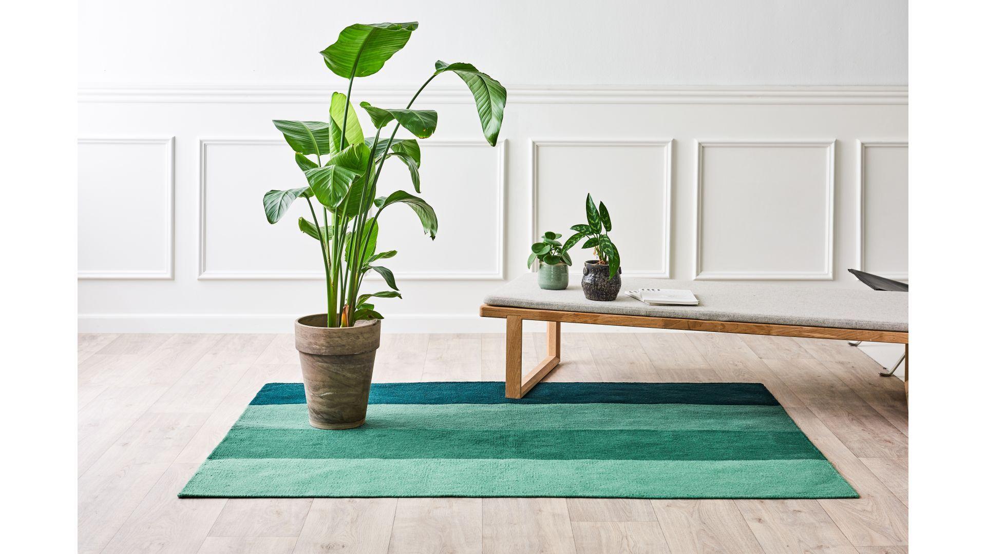 Dywan na balkon/taras, z recyklingu, w kolorze zielonym/Carpets&More. Produkt zgłoszony do konkursu Dobry Design 2020.