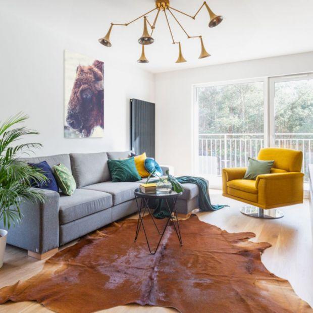 Jasny salon - 20 pięknych projektów