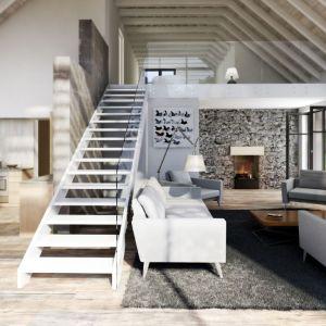 Salon z odkrytą więźbą dachową stał się integralną częścią ogrodu. Projekt N11. Fot. S&O Projekty Sylwii Strzeleckiej