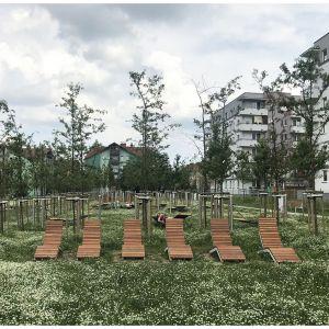 Park Reduta w Krakowie (Inwestor: Zarząd Zieleni Miejskiej w Krakowie, Projekt: JWMS)