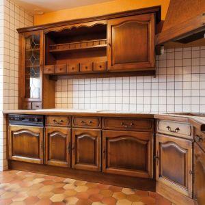 Metamorfoza kuchni: renowacja sprzętu AGD za pomocą farby. Fot. V33