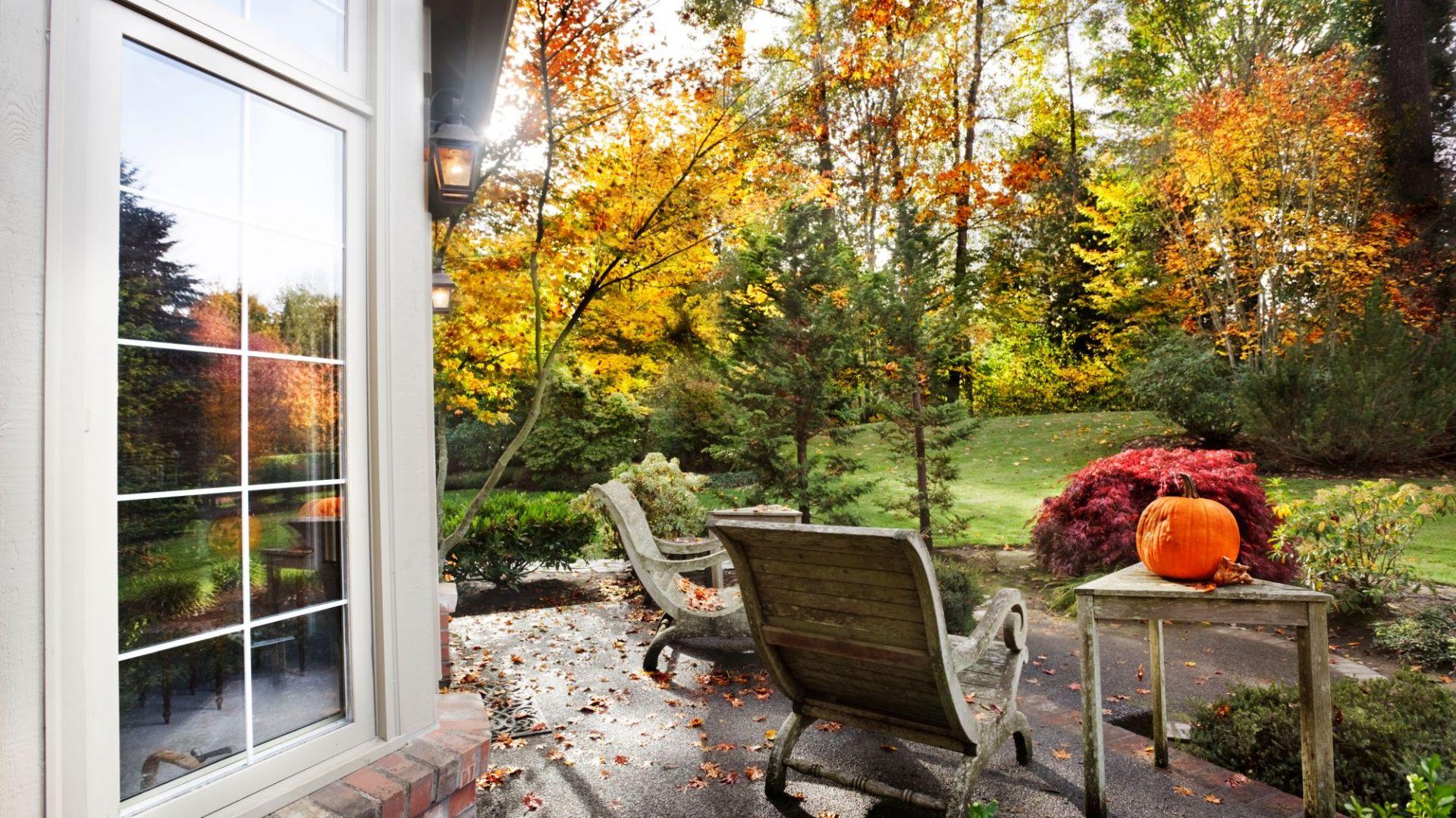 Ostatnie koszenie trawnika jesienią. Fot. Shutterstock