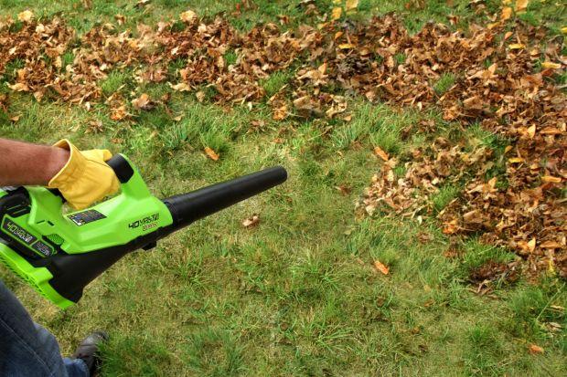 Sprzątanie ogrodu na jesień: sposoby na liście