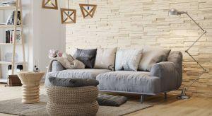 Jak wykończysz ścianą za kanapą w salonie? Jaki materiał wybrać? Zobaczcie ciekawe propozycje z wykorzystaniem płytek dekoracyjnych.