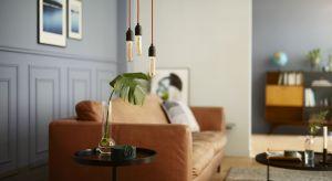 Nowoczesne i oszczędne źródła światła teraz dostępne są również w efektownej formie,stylizowanej na klasyczne żarówki w stylu Edisona.